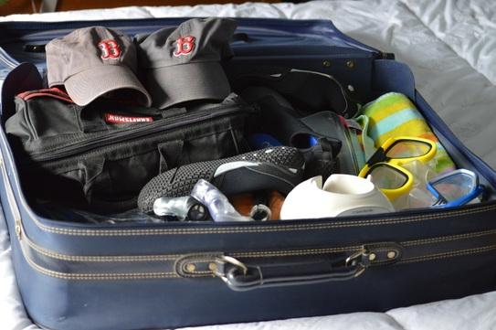 Suitcase Picture