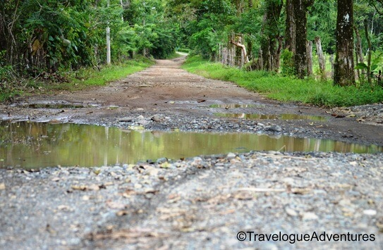 Rough dirt road in Costa Rica photo