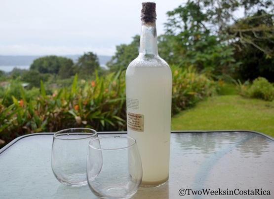 Vino de Coyol Costa Rica Picture
