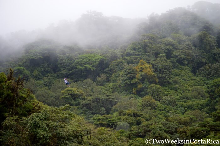 Monteverde: A Forest in the Clouds - Zip Lining through the Cloud Forest