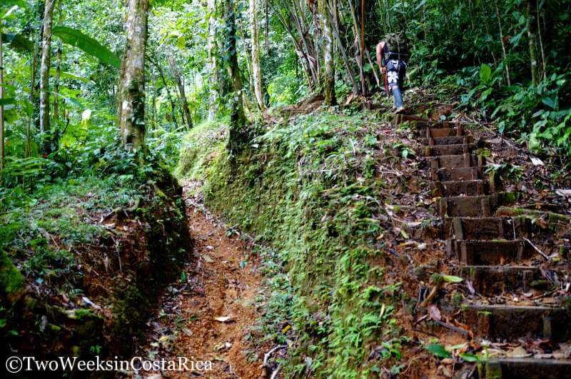 Trail to Diamante Waterfall   Two Weeks in Costa Rica
