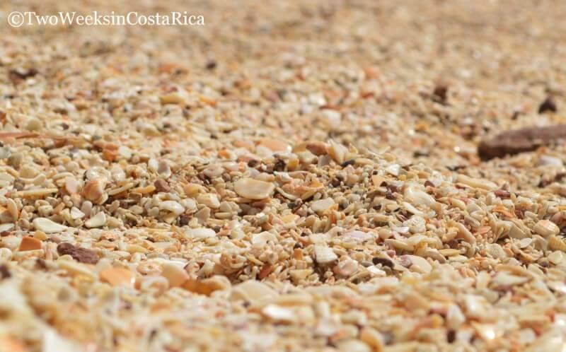 Seashell Beach, Playa Conchal   Two Weeks in Costa Rica
