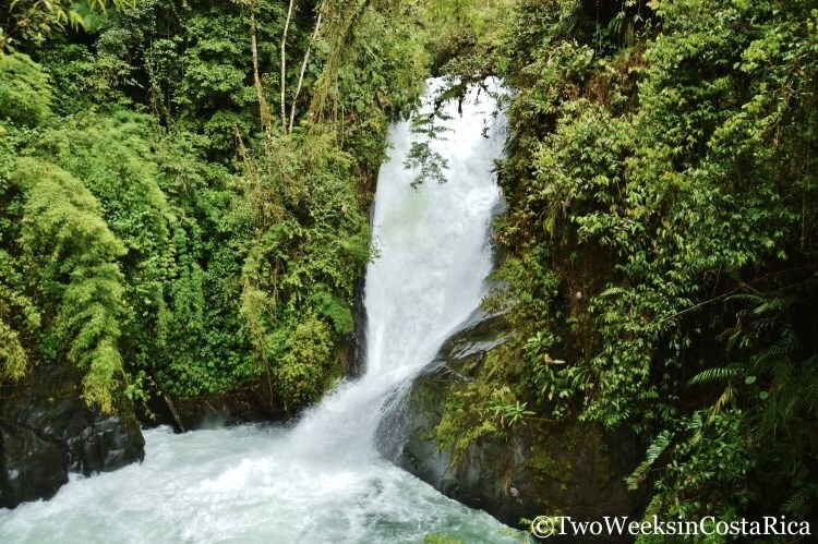 Waterfall at Cloudbridge Nature Reserve | Two Weeks in Costa Rica