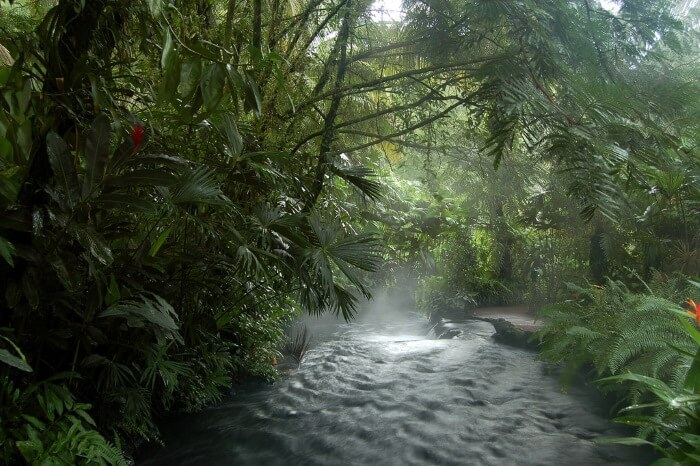 Tabacon Hot Springs | Two Weeks in Costa Rica