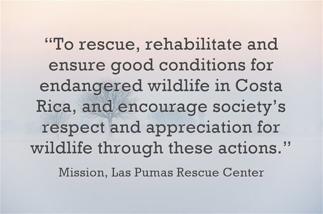 Las Pumas Mission Quote | Two Weeks in Costa Rica
