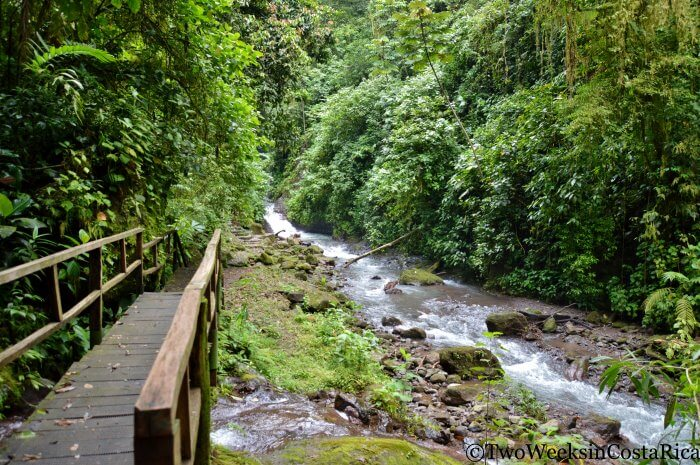 Rainmaker Conservation Project | Two Weeks in Costa Rica