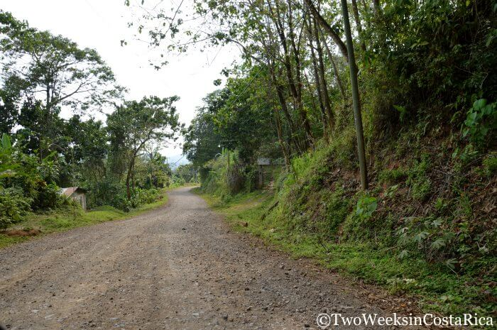 Road to La Iguana Chocolate | Two Weeks in Costa Rica