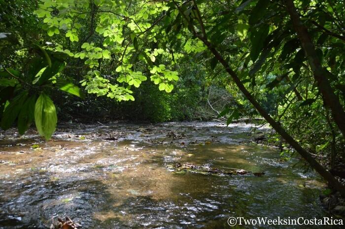 The Quebrada Bonita inside Carara National Park | Two Weeks in Costa Rica