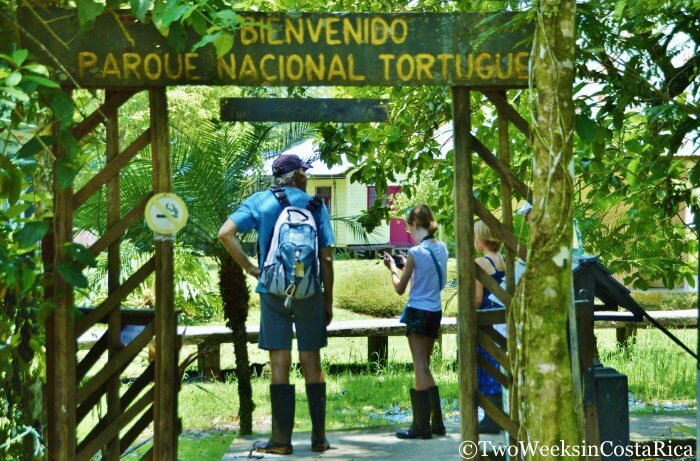 Tips for Visiting Tortuguero National Park