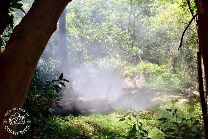 Steam Vents Rincon de la Vieja