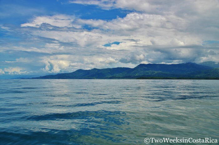 Whale Watching in Uvita, Costa Rica | Two Weeks in Costa Rica