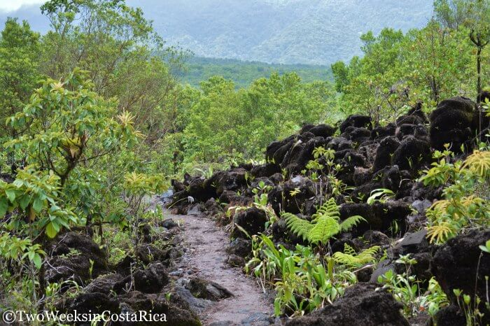 Arenal Volcano : Hiking the 1968 Trail | Two Weeks in Costa Rica
