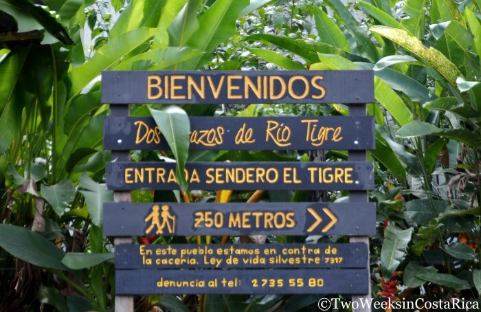 Corcovado's El Tigre Entrance- Hiking and Activities from Puerto Jimenez | Two Weeks in Costa Rica