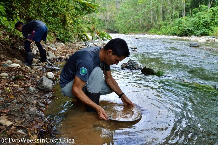 A Gold Mining Tour: Hunting for Treasure on the Osa