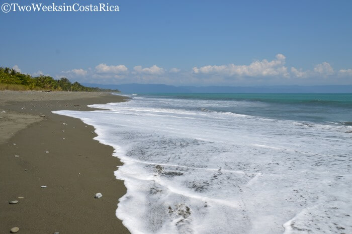 Puerto Jimenez: An Outpost to the Osa | Two Weeks in Costa Rica