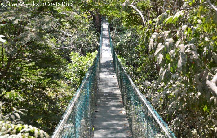 Montezuma Waterfalls: Best Ways to Access