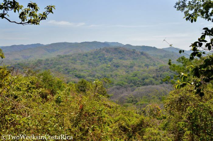 Samara Trails: Exploring the Tropical Dry Forest