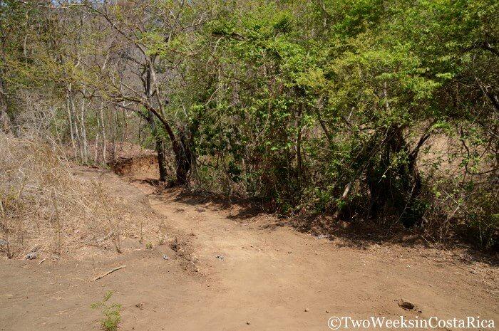 Trail to the Belen Waterfall near Samara Costa Rica