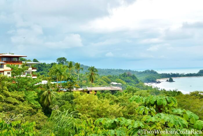 Thick rainforest surrounds in Manuel Antonio