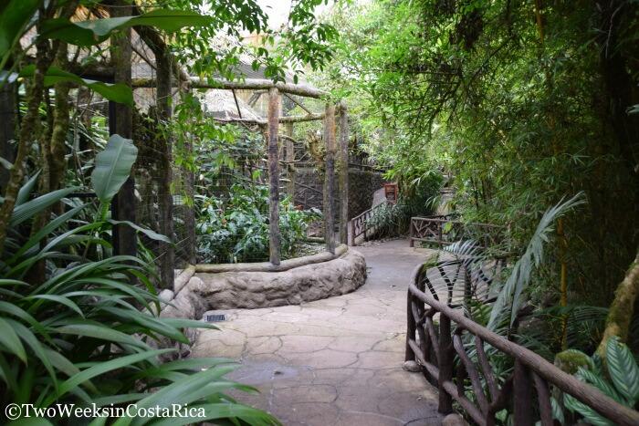 Exhibits at La Paz Waterfall Gardens