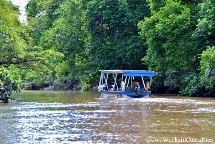 Palo Verde Boat Tour
