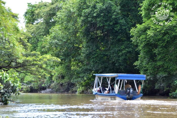 Boat Tour Palo Verde National Park