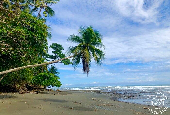 Living in Costa Rica 7 Year Update