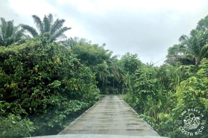Nun's Bridge Pavones Costa Rica