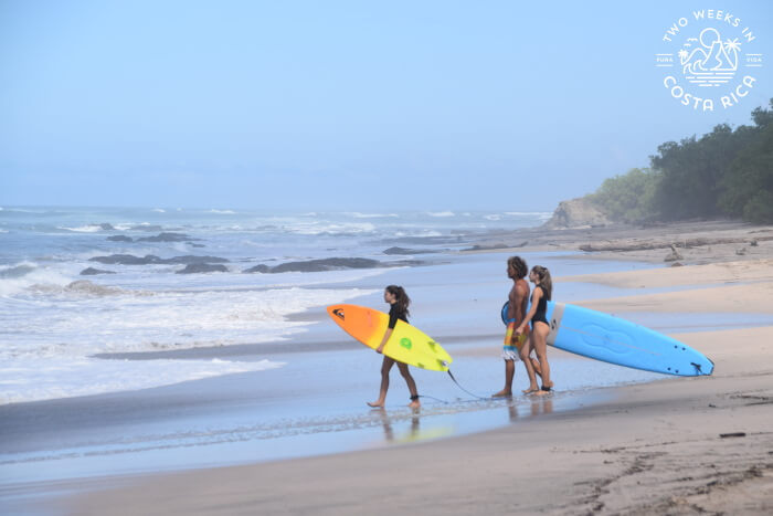 Playa Avellanas Area Destination Guide