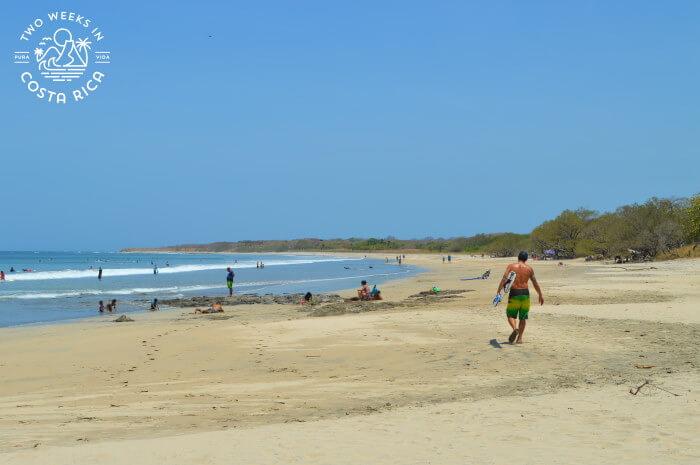 Playa Avellanas Guide