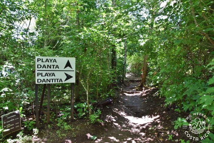 Trail to Playa Dantita