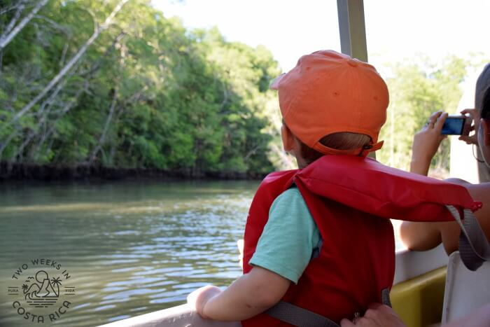 Boat Tour Palo Verde - Costa Rica Family Itinerary