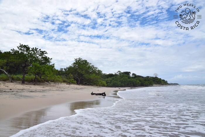 Playa Lagartillo Costa Rica