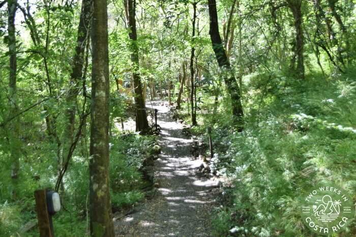 Trail Access Hot Springs Rincon de la Vieja