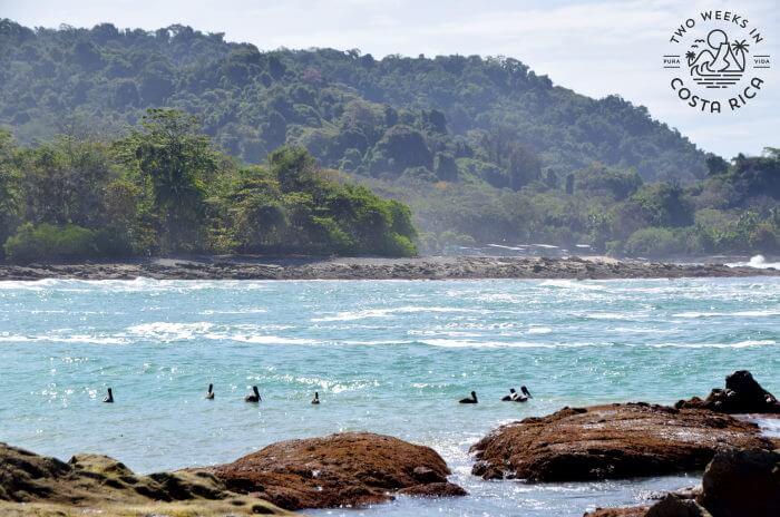 View of Bahia Barigona