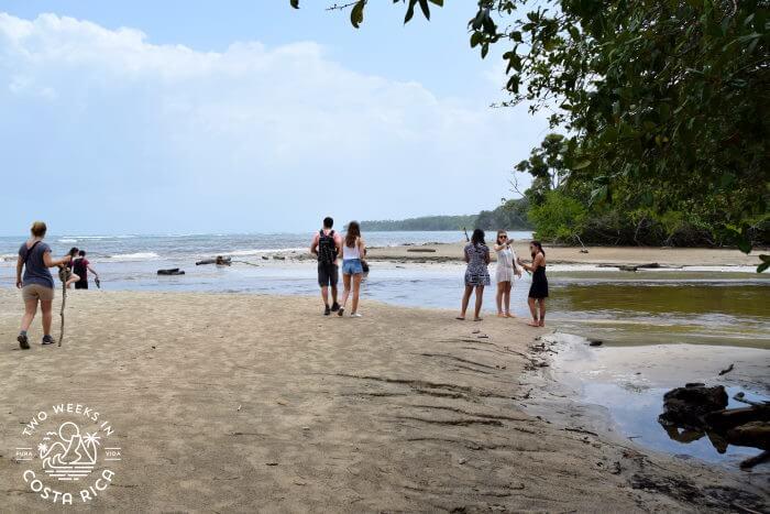Suarez River Cahuita