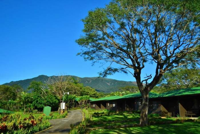 Buena Vista Eco Adventure Park and Lodge