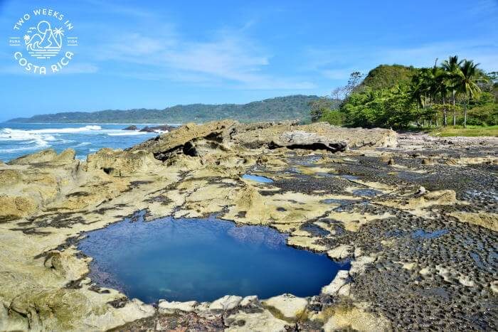 Mal Pais Tide Pools Guide to Visiting
