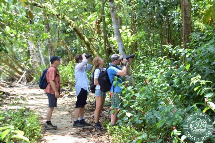 Visitors Cahuita National Park