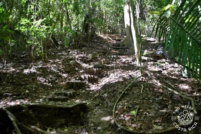 Sueco Trail Conditions