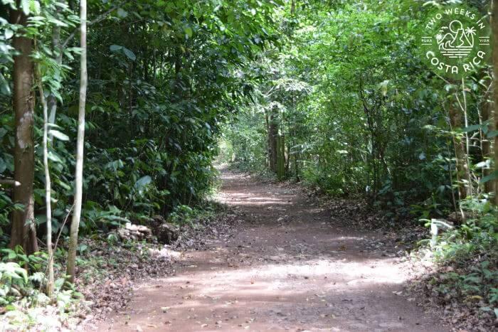 Trail to Catarata El Salto de Gamalotillo