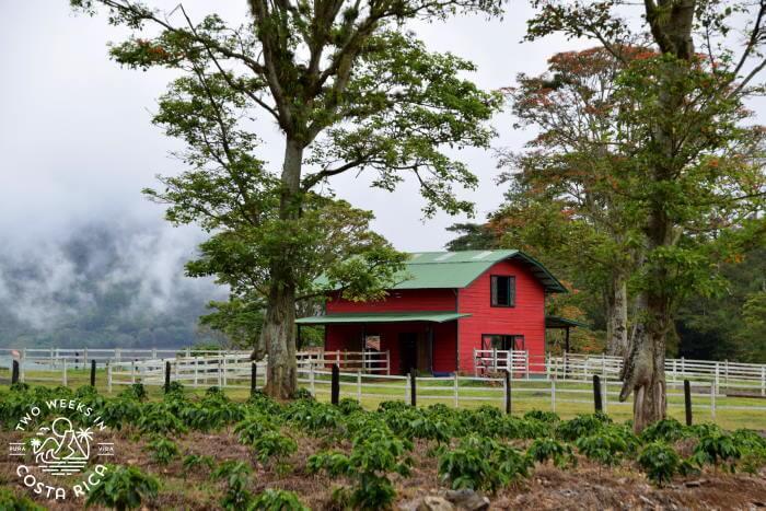 Red Barn Hacienda Orosi