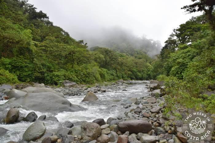 River in Tapanti