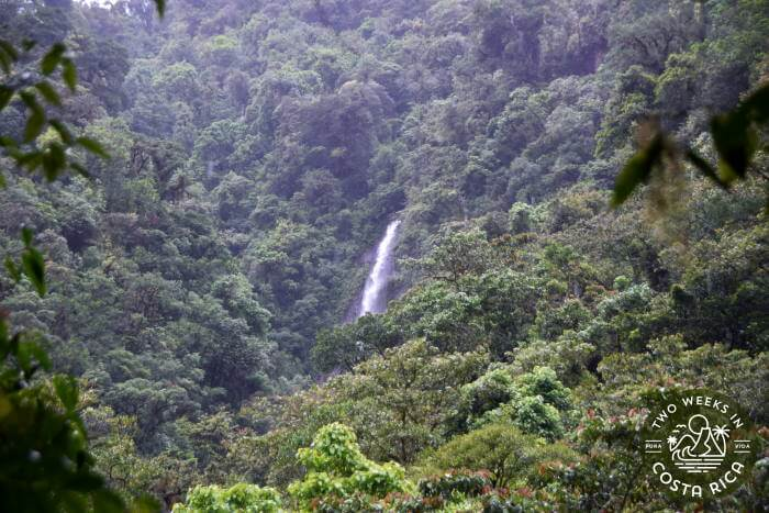 View Waterfall Trail Tapanti