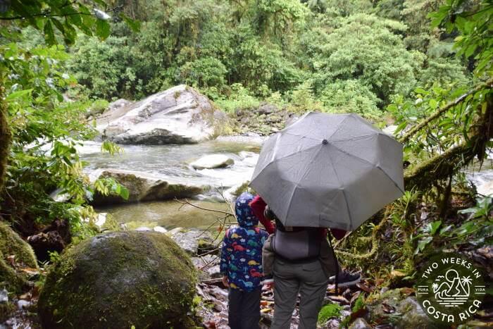 Rain Tapanti