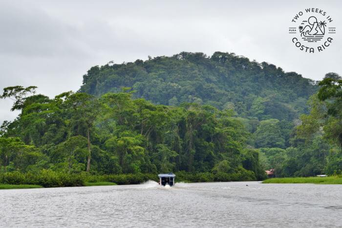 Boat Taxi La Pavona to Tortuguero