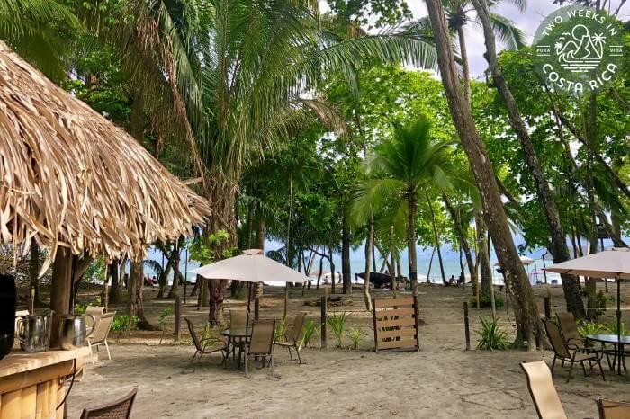 Beach Bar Restaurant Buena Vista Manuel Antonio