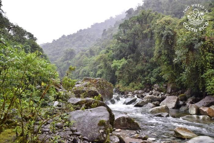 River Tapanti National Park