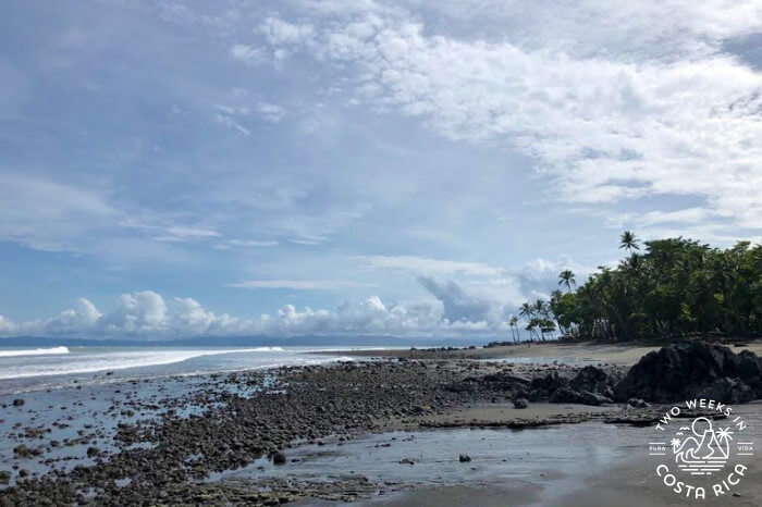 Southern Pacific Coast Costa Rica Early July