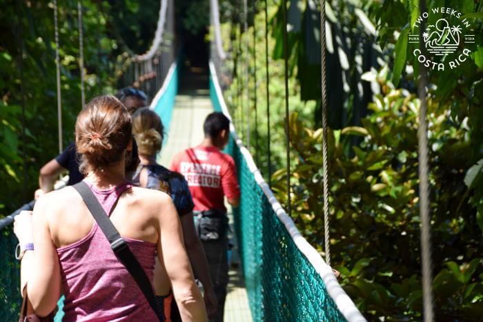 Naturalist Guides Costa Rica
